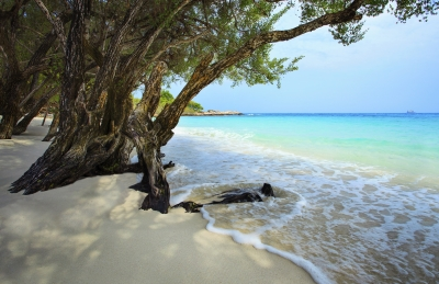 http://www.freedigitalphotos.net/images/quiet-and-peaceful-white-sand-beach-of-koh-samed-rayong-province-photo-p225259