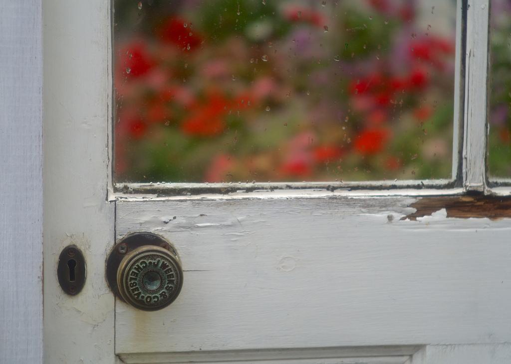 photo credit: Old Greenhouse Door via photopin (license)